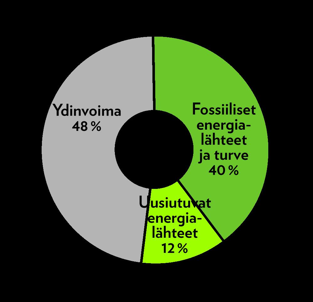 lumme_sahkon_alkupera_2019_2
